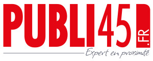 Publi45 logo